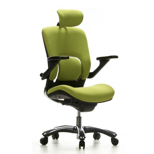 Ergonomische bureaustoel Groen